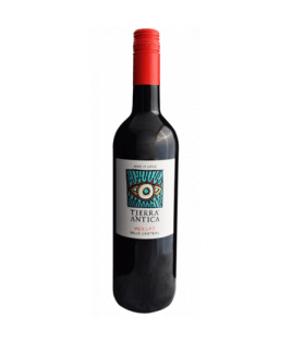 Vin rouge Chilien - Central Valle - Tierra Antica Merlot